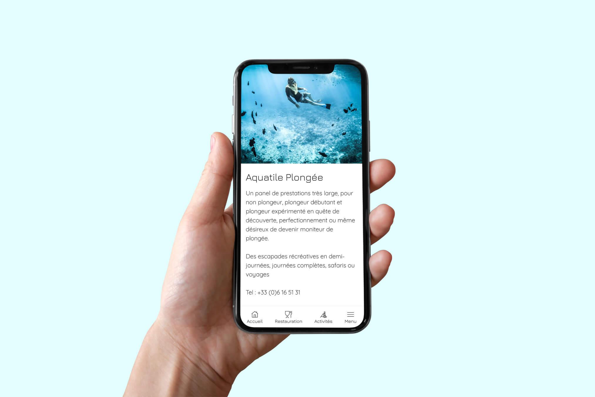 application mobile en ligne